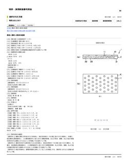 特許・実用新案番号照会2(詳細表示)|J-PlatPat.jpg