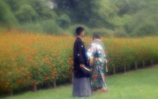 analog-film-canon-al-1-diy-single-lens-using-a-x35-vixens-pocket-lupe-p45n-magnifying-glass--kodak-ultramax-400-location-hama-rikyu-gardens-tokyo-japan-august-25-2017_36110003264_o.jpg