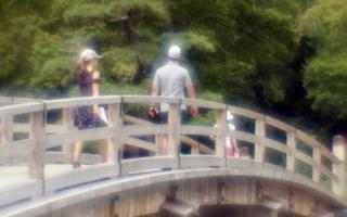 analog-film-canon-al-1-diy-single-lens-using-a-x35-vixens-pocket-lupe-p45n-magnifying-glass--kodak-ultramax-400-location-hama-rikyu-gardens-tokyo-japan-august-25-2017_36804522421_o.jpg