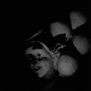 clown-rolleiflex-sl66-with-ttl-meter-finder--filmed-by-rollei-hft-planar28--80-kodak-tri-x-400--my-home-asaka-shi-japan-february-14-2016_24760906609_o.jpg