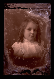 dryplate1.png