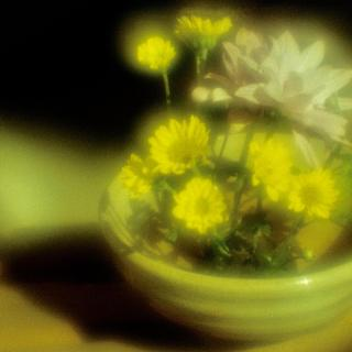 exakta-rtl1000-with-homemade-lens-using-a-x2-magnifier-lens-lomography-redscale-xr-50-200-location-in-my-home-asaka-shi-saitama-japan-february-13-2017_32826834861_o.jpg