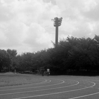meopta-flexaret-iv-belar-f80mm-kodak-tri-x-400-location-wako-jurin-koen-wako-forest-park-saitama-september-3-2016_29548921921_o.jpg