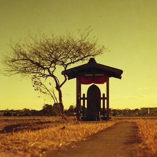 rolleiflex-sl66--filmed-by-rollei-hft-planar28--80-lomography-redscale-xr-50-200-location-nambata-castle-park-in-saitama-december-29-2015_24245773915_o.jpg