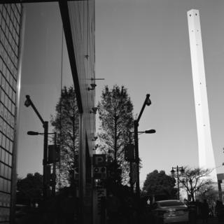 rolleiflex-sl66-filmed-by-rollei-hft-planar28--80-kodak-tri-x-400-location-adachi-park-of-living-things--ikebukuro-tokyo--december-16-2016_32351674182_o.jpg