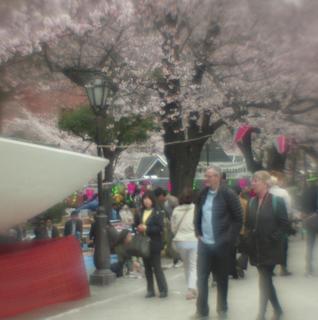 rolleiflex-sl66-with-ttl-meter-finder--filmed-by-homemade-lens-using-a-x23-magnifier-lens-a-x20-magnifier-lens-etc--fuji-pro-160-ns--rikugi-en-asakusa-tokyo-japan-april-1-2016_25688778394_o.jpg