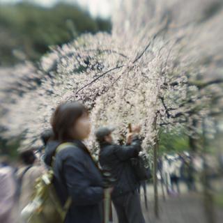 rolleiflex-sl66-with-ttl-meter-finder--filmed-by-homemade-lens-using-a-x23-magnifier-lens-a-x20-magnifier-lens-etc--fuji-pro-160-ns--rikugi-en-asakusa-tokyo-japan-april-1-2016_26221050441_o.jpg