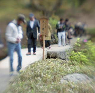 rolleiflex-sl66-with-ttl-meter-finder--filmed-by-homemade-lens-using-a-x23-magnifier-lens-a-x20-magnifier-lens-etc--fuji-pro-160-ns--rikugi-en-asakusa-tokyo-japan-april-1-2016_26267642366_o.jpg