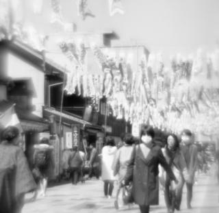 rolleiflex-sl66-with-ttl-meter-finder--filmed-by-homemade-lens-using-a-x23-magnifier-lens-kodak-tri-x-400--kawagoe-festival-kawagoe-shi-japan-march-26-2016_25689015054_o.jpg