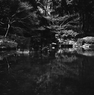 voigtlnder-superb-1933--skopar-75mm-f35-with-y-filter--kodak-tri-x-400-location-musashi-kyuryo-national-government-park-saitama-japan-april-2-2017_33067514594_o.jpg