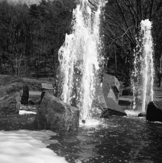 voigtlnder-superb-1933--skopar-75mm-f35-with-y-filter--kodak-tri-x-400-location-musashi-kyuryo-national-government-park-saitama-japan-april-2-2017_33753782332_o.jpg